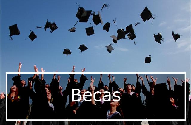 Ayudas de la Universidad de Alicante