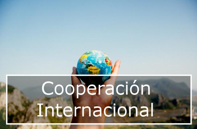Ayudas a la cooperación internacional