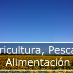 Ayudas proyectos colectivos, financiados por FEMP (Galicia)