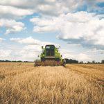 Primas compensatorias y de mantenimiento de forestación de tierras agrícolas (2020)